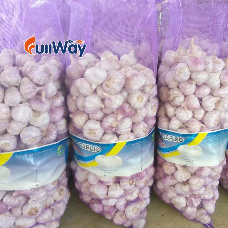 garlic mesh bag